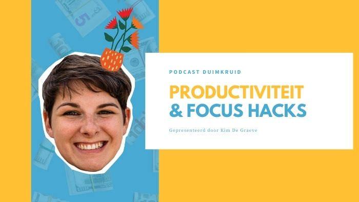 productiviteit hacks cursus online productiviteit workflow workshop kim de graeve ondernemers passief inkomen omzet winst ideale klant niches