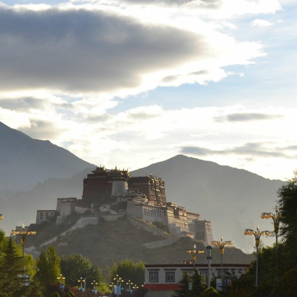 dalai lama weerstand mentaal ondernemen tibet boeddhisme kim de graeve verbinding vreugde vrijheid geluk 1